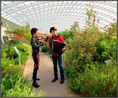 At the National Botanic Gardens - Photo by John B Davies.